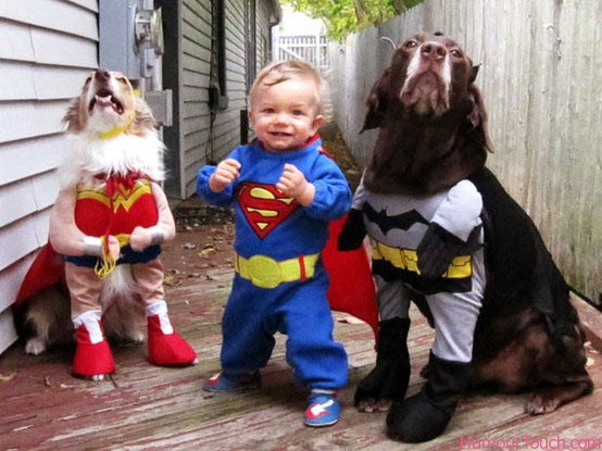 toddler-and-dogs-dressed-up-as-superheroes